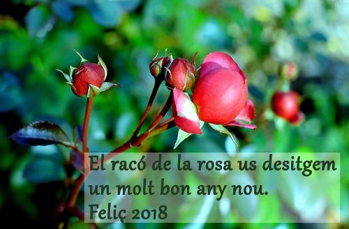 El racó de la rosa us desitja un bon any nou. Feliç 2018